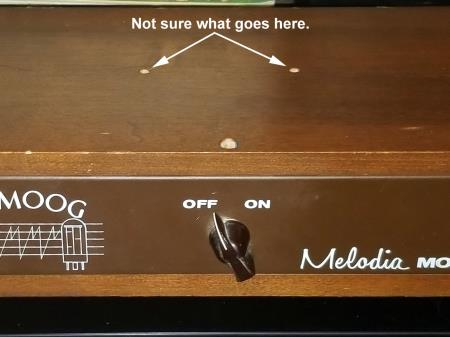 Moog Melodia (http://www.thereminworld.com/user/kiaya611)